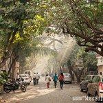 Adi Murzban Path street