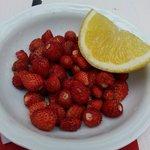 petites fraises des bois