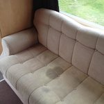 Just one of the stains on the sofas.