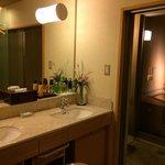 Bathroom, shower area and open air bath