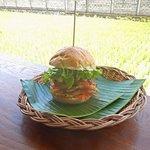 Chicken schnitzel swich way at Dupa