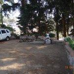 Car parking area near cottage