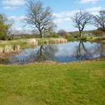 Water feature on the golf course