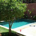 Beautiful villa garden