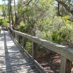boardwalk to camp sites