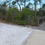 hiking trail off the boardwalk
