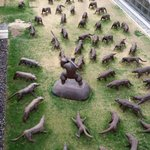My favourite exhibit #attackedbywolves