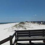 beach area on gulf side