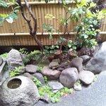 Il meraviglioso giardino