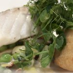 Cod Fillet with Creamed Spring Vegetables and Smoked Haddock Beignet