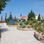 Bungalow cottages &cactus garden