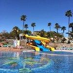 Fab pool slides!