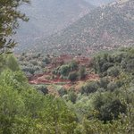 A Berber village from the hotel grounds