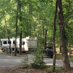 Campsite 25 / Raven Hill