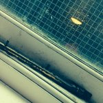 Mould on the window