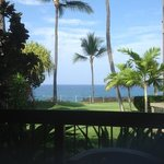 Beautiful view from the lanai.