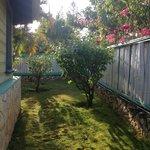 cottage 5 garden