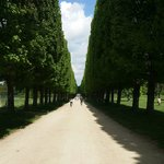 Biking through versailles