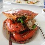 Delicious spicey crab