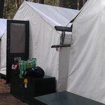 Tent #659