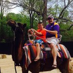 My son loved the camel ride.