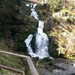 triberg water fallls