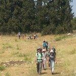 Travel around-Nahal Tavor