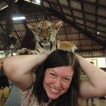 lol tiger cub on my head