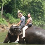 having fun going for a swim in the river with an elephant