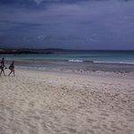 corralejo playa grande
