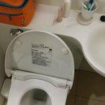 Toilet bowl area