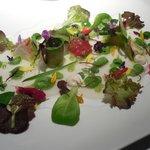Ensalada de tuétanos de verdura con marisco, crema de l echuga de caserío y jugo yodado