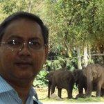 Me & the elephants