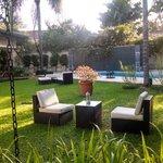 Beautiful calming courtyard