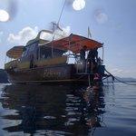 Tagesboot Runaway