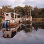 Yellow Waters Wetlands Cruise