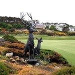 Nairn Golf club 5 minutes away by car