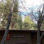 4403 Cottonwood, April 19,2014 view