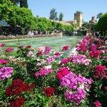 Jardines del Alcázar de Cordoba