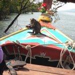 Tifffany Lanta longboat cruise