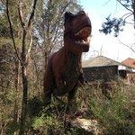Dino-Trek inside The Nashville Zoo