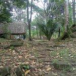 Num Li Punit excavation