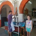 The Pineapple Press