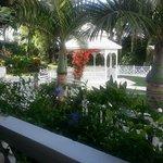 jardín tropical entre el hotel y la playa