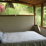 A jungle room with terrific comforts!