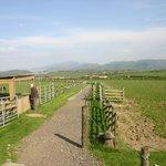 The lovely view of the fells