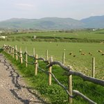 The panoramic view of the Cumbrian fells