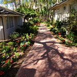 Walkway between bungalows