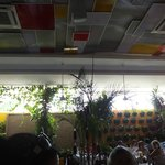 Ceiling and Beautiful Plants on Wall