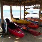 Kayaks and stand up paddle boards